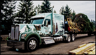 Kenworth W990 Hauling the 2018 U.S. Capitol Christmas Tree