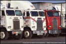 Freightliner Cabovers at a Truckstop