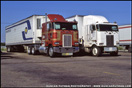 A Pair of Peterbilt Model 362 Cabovers