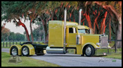 Spike Fuller's 1995 Peterbilt model 379